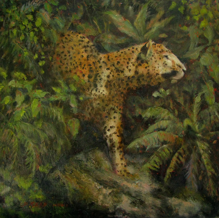 On the Prowl      oil on board       17' x 17' unframed size